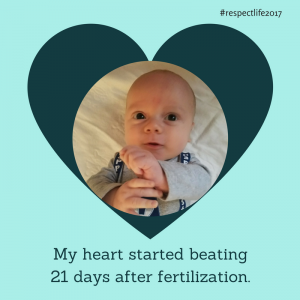 My heart started beating 21 days after fertilization.